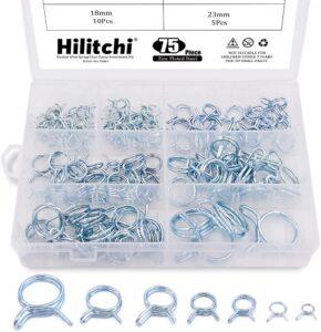 Hilitchi 75pcs Double Wire